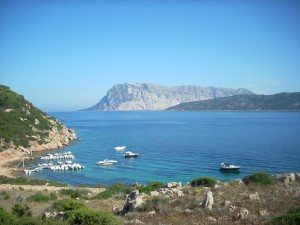 sardinia, blue zones, regal fish,